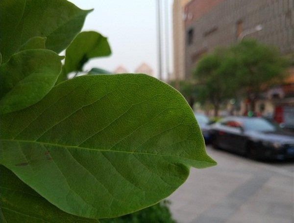 Фото на Xiaomi Mi6