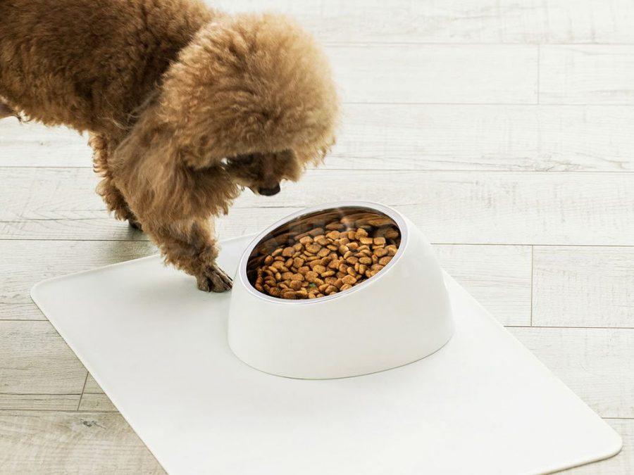 Xiaomi: аксессуары для домашних животных