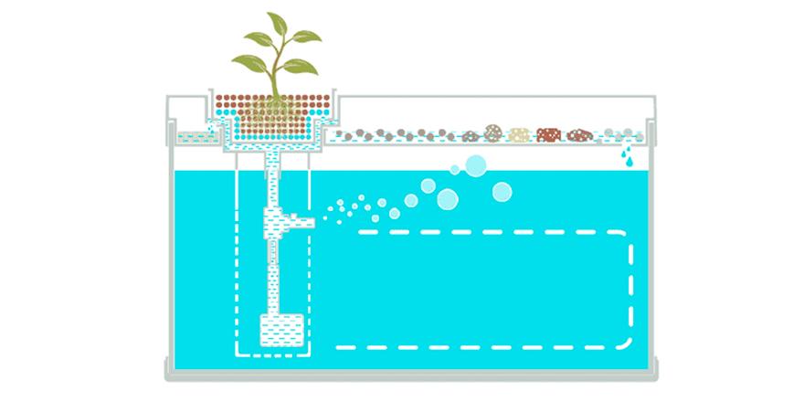 Умный аквариум Xiaomi Geometry Fish Tank Aquaponics Ecosystem (HF-JHYG001): обзор