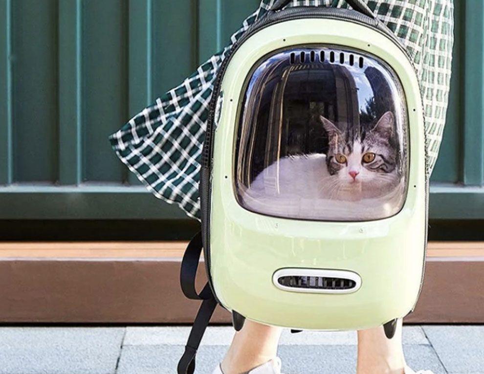 Удобный рюкзак-переноска для кошек Xiaomi Petkit Fresh Wind Cat Backpack: обзор